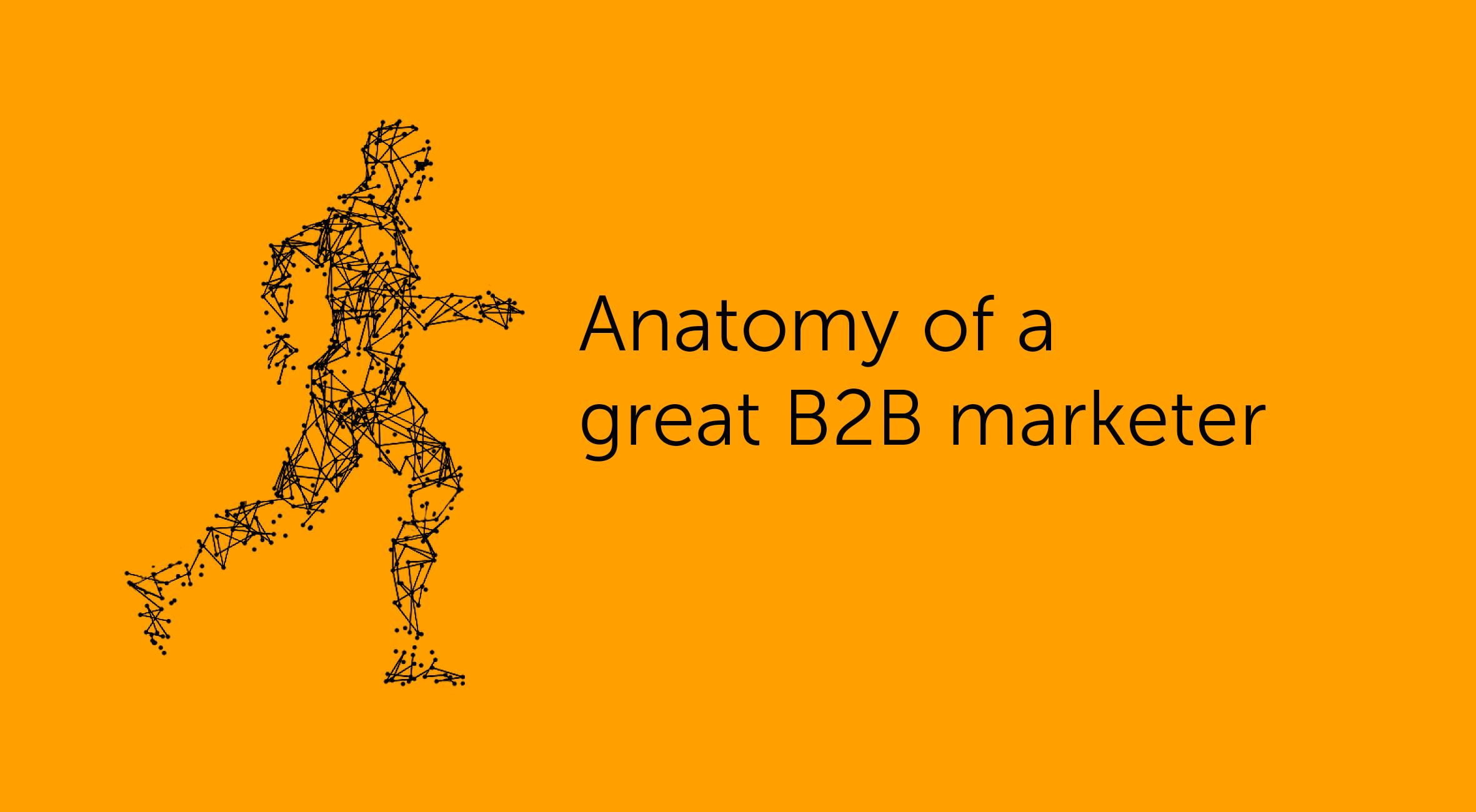 Anatomy of B2B marketer